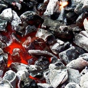 ashremains