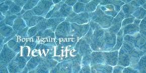 Born Again, part 1: NewLife