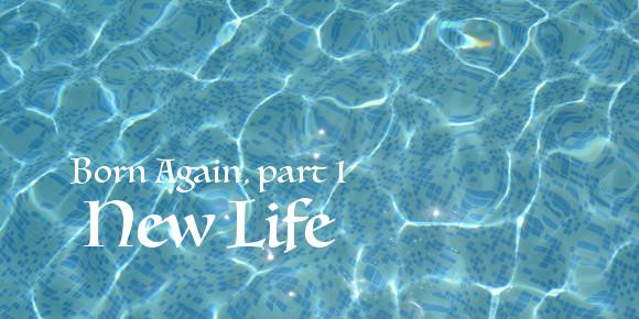 bornAgain-NewLife(featured)