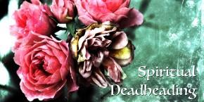 Spiritual Deadheading